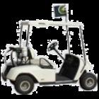 Golf Cart Flags
